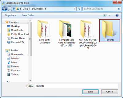 Select a local folder to sync torrents and downloads